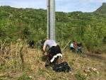Seconda giornata di lavoro dei volontari al Canile Savena