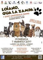 """Domenica 7 maggio """"Loiano, qua la zampa - 1° Expo Amatoriale canina"""""""