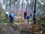 Volontari e Associazioni insieme per pulire la strada della Pineta