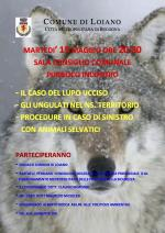 Gli animali selvatici nel nostro territorio, se ne parla martedì 15 maggio in un incontro pubblico a Loiano