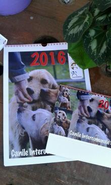 Sono già disponibili i Calendari 2016 del Canile Savena.