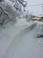 Spesi più di 50.000  euro per gli interventi eseguiti durante la nevicata di febbraio