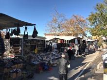 Precisazioni sull'Ordinanza cani in aree affollate (mercato domenicale, eventi e feste)